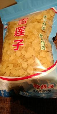 这是一张关于无硫双荚皂角米的产品图片