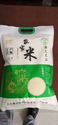这是一张关于南梗46号大米 一等品 晚稻 粳米的产品图片