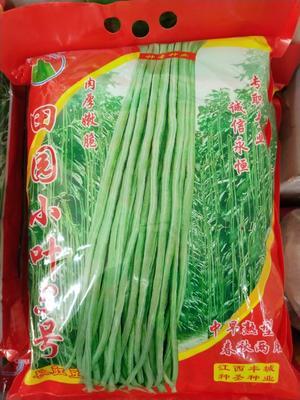这是一张关于长青豆角种子 ≥85%的产品图片