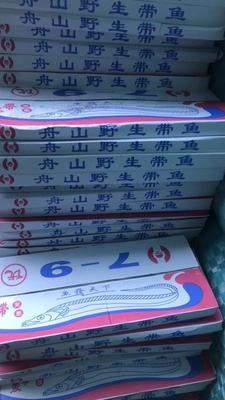 辽宁省沈阳市于洪区舟山带鱼 野生 0.5公斤以下