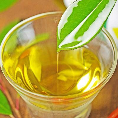 贵州省黔东南苗族侗族自治州黎平县压榨一级山茶油