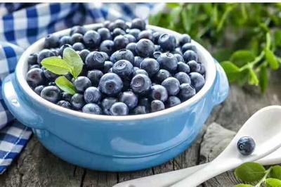 黑龙江省伊春市五营区野生蓝莓 2 - 4mm以上 冻果