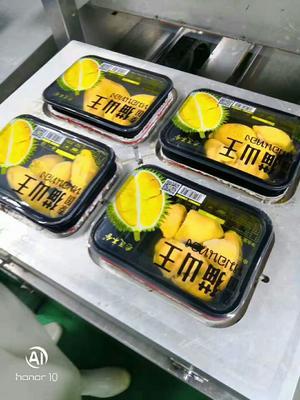 这是一张关于猫山王榴莲 3 - 4公斤 90%以上的产品图片