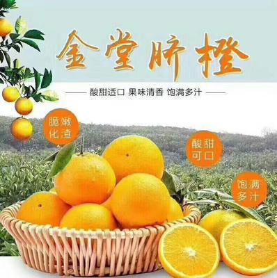 这是一张关于金堂脐橙 80-85mm 8两以上的产品图片