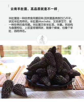 云南省昆明市五华区干羊肚菌 袋装 1年以上