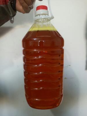 这是一张关于冷榨大豆油的产品图片