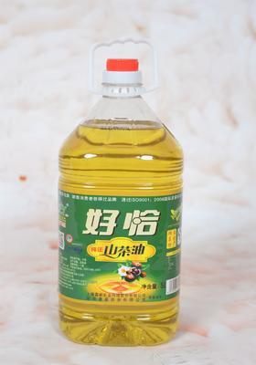湖南省株洲市茶陵县压榨一级山茶油