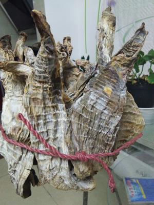 湖南省郴州市苏仙区楠竹笋干 散装 1年以上