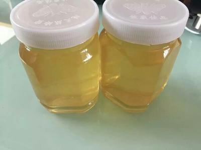 这是一张关于山花蜜 塑料瓶装 2年以上 100%的产品图片