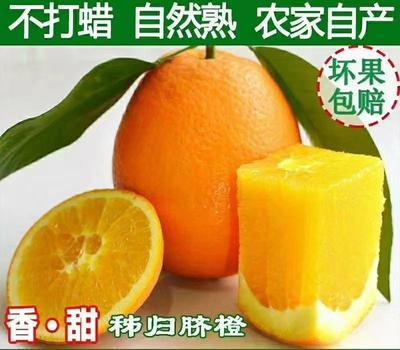 这是一张关于秭归脐橙 70-75mm 4-8两的产品图片