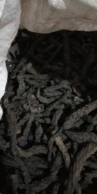 这是一张关于草苁蓉 干的产品图片