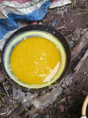 这是一张关于蜂蜡 1个月的产品图片