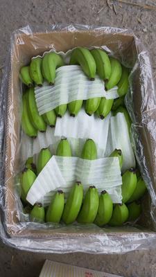 这是一张关于巴西香蕉 七成熟的产品图片