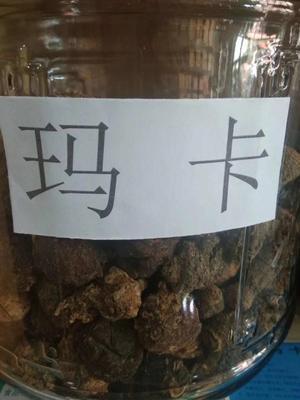 甘肃省酒泉市瓜州县(原安西县)黑玛咖