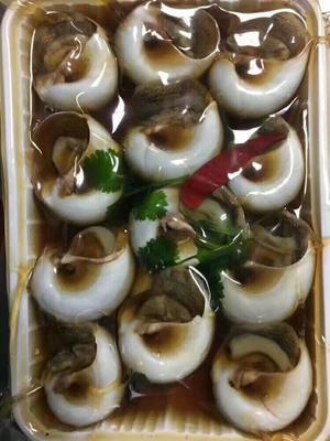 这是一张关于海田螺 野生 10-20只/公斤的产品图片