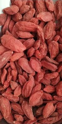 这是一张关于红枸杞 统货的产品图片