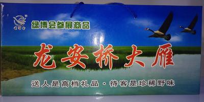 黑龙江省齐齐哈尔市龙沙区鸿雁