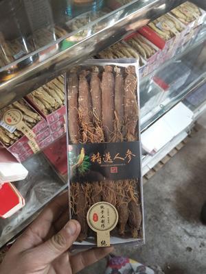 吉林省白山市抚松县红参  全须 盒装 现货供应中通包邮