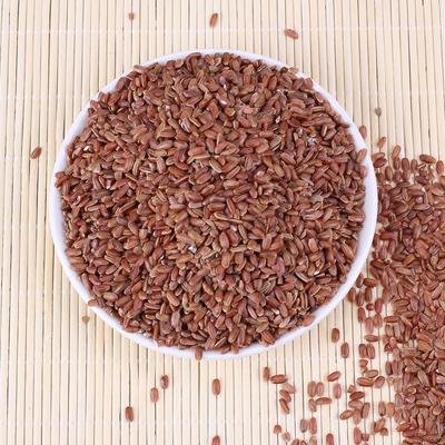软红米 红大米红糙米各种杂粮
