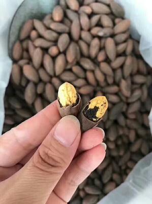 湖北省武汉市汉阳区香榧 18-24个月 包装