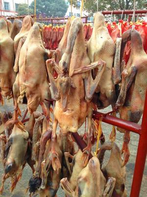 湖南省张家界市武陵源区狮头鹅肉 简加工