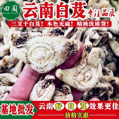 云南省昆明市官渡区白及  (白芨干货)一级选货