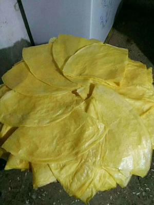 吉林省通化市辉南县玉米煎饼  玉米碴子手工煎饼