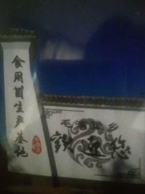 河南省新乡市卫辉市普通平菇 通货