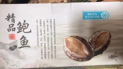 黑龙江省牡丹江市爱民区大连小鲍鱼 野生