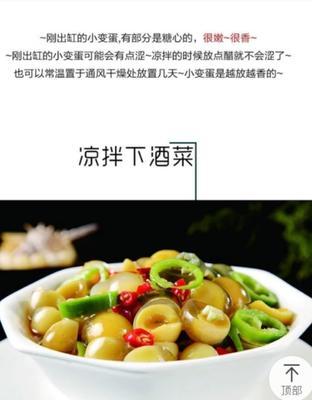 河南省商丘市民权县鹌鹑皮蛋