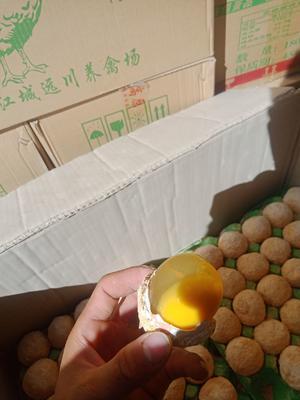 云南省昆明市官渡区松花鸡蛋