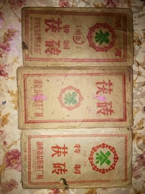 青海省西宁市大通回族土族自治县安化黑茶 一级 袋装