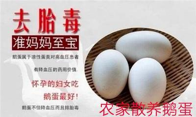 云南省文山壮族苗族自治州砚山县土鹅蛋 食用 散装