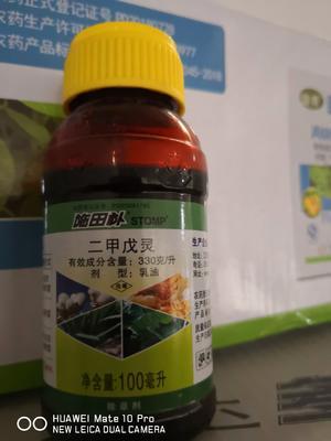 二甲戊灵  乳油 瓶装 低毒 33%100g施田补