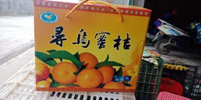 这是一张关于蜜桔 统货 1.5 - 2两 的产品图片