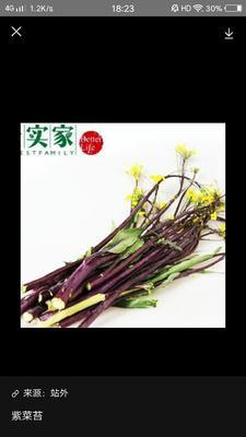 湖北省荆州市荆州区红菜苔  25~30cm 具体规格与图片无相差