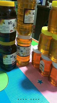 黑龙江省大兴安岭地区呼玛县东北黑蜂蜜