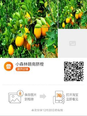 江西省赣州市安远县赣南脐橙 100mm以上 8两以上
