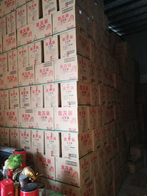 广东省广州市天河区精制豆油
