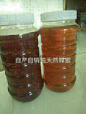 这是一张关于土蜂蜜 玻璃瓶装 2年以上 95%以上 的产品图片
