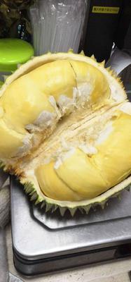 这是一张关于干尧榴莲 2 - 3公斤 30 - 40%以上 的产品图片