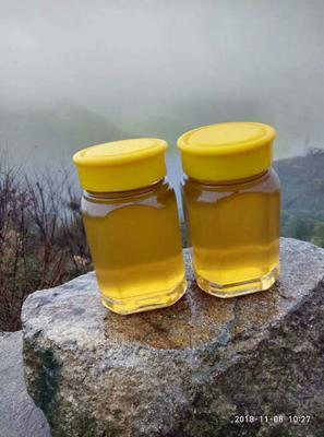这是一张关于黄芪蜂蜜 塑料瓶装 2年以上 95%以上 的产品图片