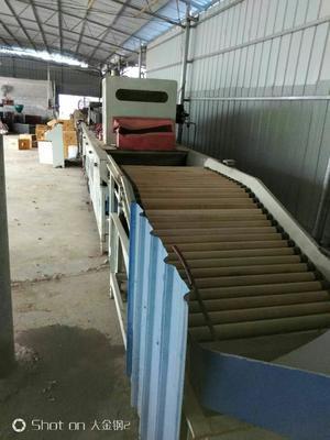 广西壮族自治区南宁市江南区果蔬清洗设备