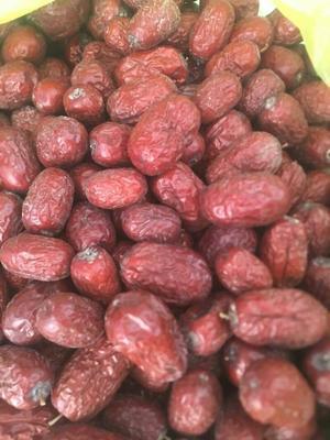 新疆维吾尔自治区克孜勒苏柯尔克孜自治州阿图什市巴旦木 1年以上 带壳