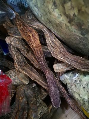 青海省西宁市城东区锁阳 散装 块 干燥