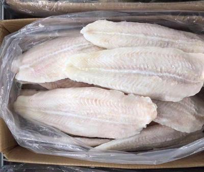 广东省珠海市金湾区巴沙鱼 人工养殖 0.5公斤以下