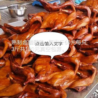 广东省梅州市梅县区囱腊鸭