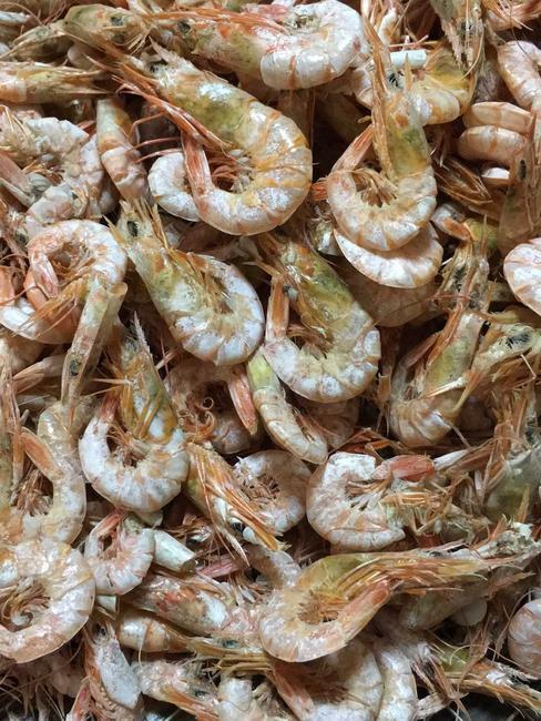 烤虾干 纯手工制作的鲜活烤虾