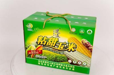 黑龙江省绥化市安达市糯玉米 去壳 甜糯