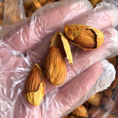 广东省惠州市惠城区巴旦木 1年以上 带壳